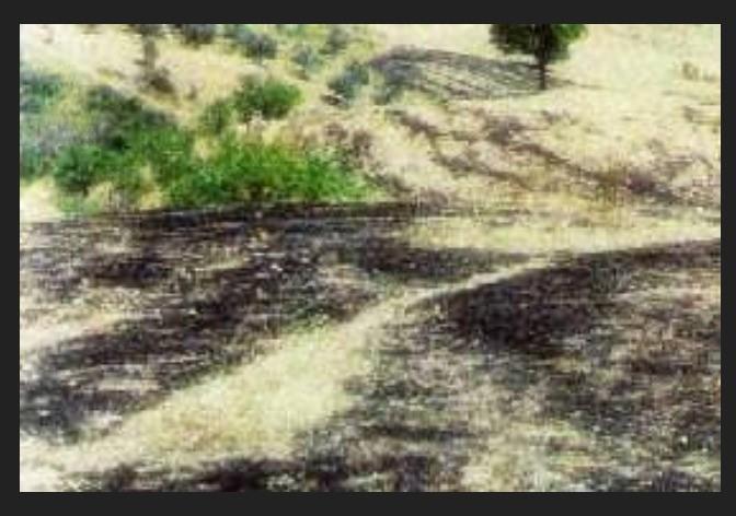 Аварийное приземление НЛО с пришельцами в Греции