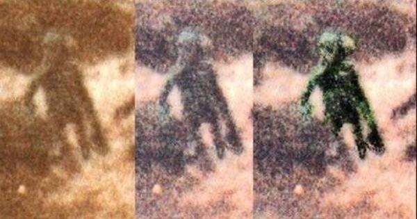 История знаменитого снимка «пришельца в Илкли Мур»