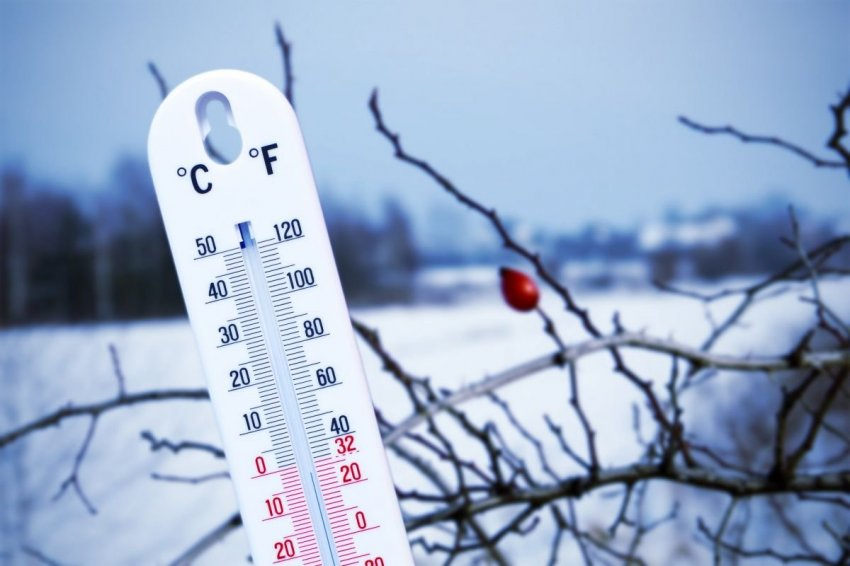 Днем жара, а ночью заморозки: погода в российских регионах на грани аномальной