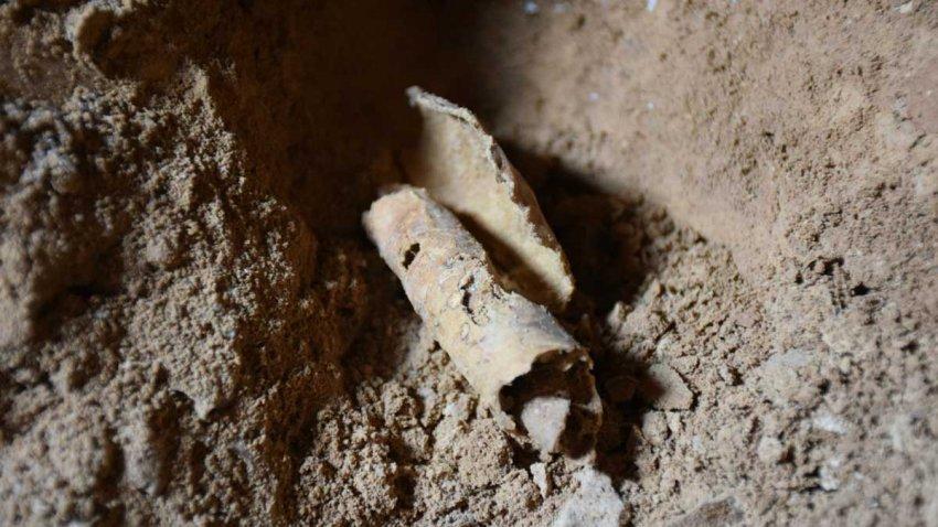 Свитки Мертвого моря: что откроют недавно обнаруженные артефакты из Пещеры ужасов?