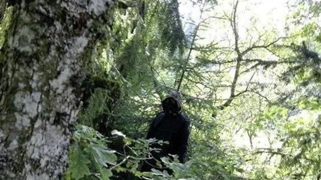 Странный лесной житель в плаще и противогазе десять лет пугал жителей швейцарской глубинки