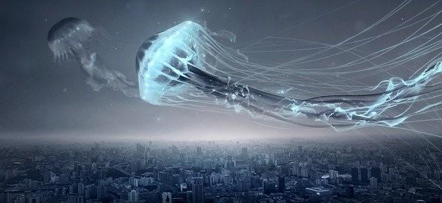 Загадка летающих медуз и небесных кальмаров