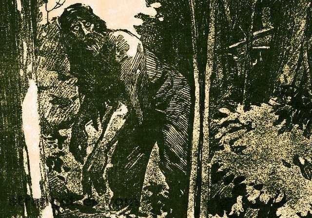 Загадка «горных людей» или вероятность существования в горах США одичалой общины