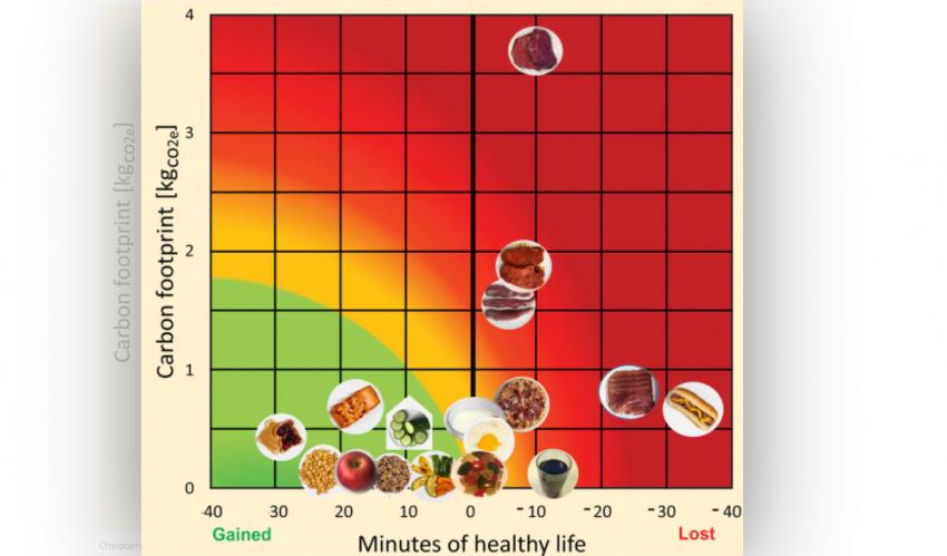 Индивидуальный выбор диеты может сказаться на продолжительности жизни