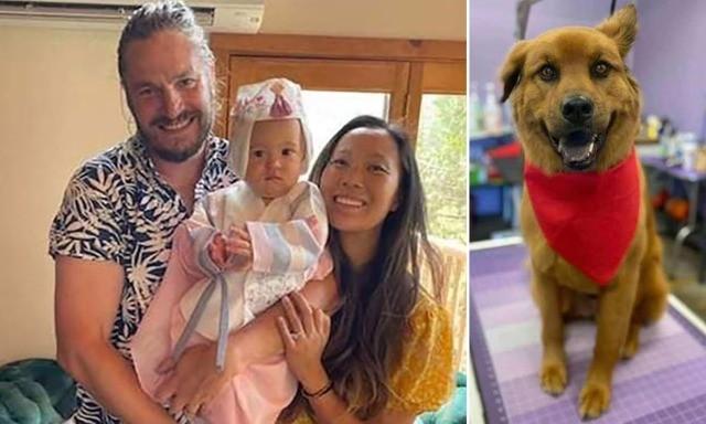 Район Калифорнии, где загадочно погибла семья, запретили посещать туристам из-за «неизвестных опасностей»