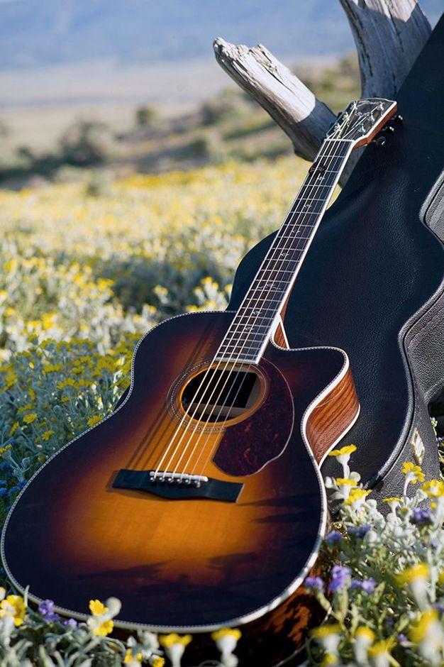 Рейтинг лучших акустических гитар