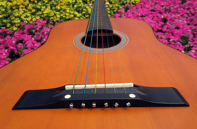 Топ 10 лучших акустических шестиструнных гитар