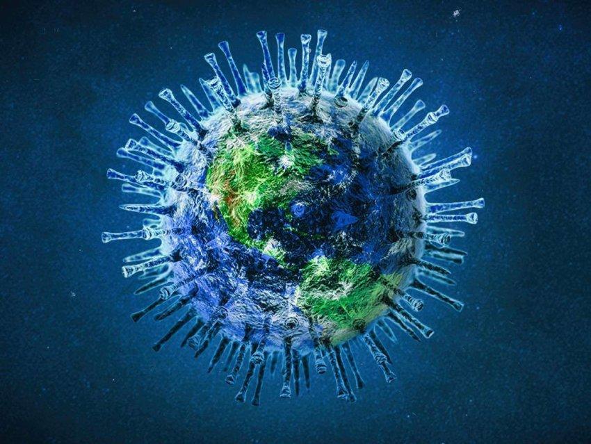 Что происходит, когда два очень разных респираторных вируса заражают одну и ту же клетку. Новое исследование
