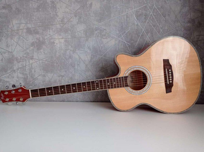 Рейтинг 10 лучших акустических гитар для начинающих